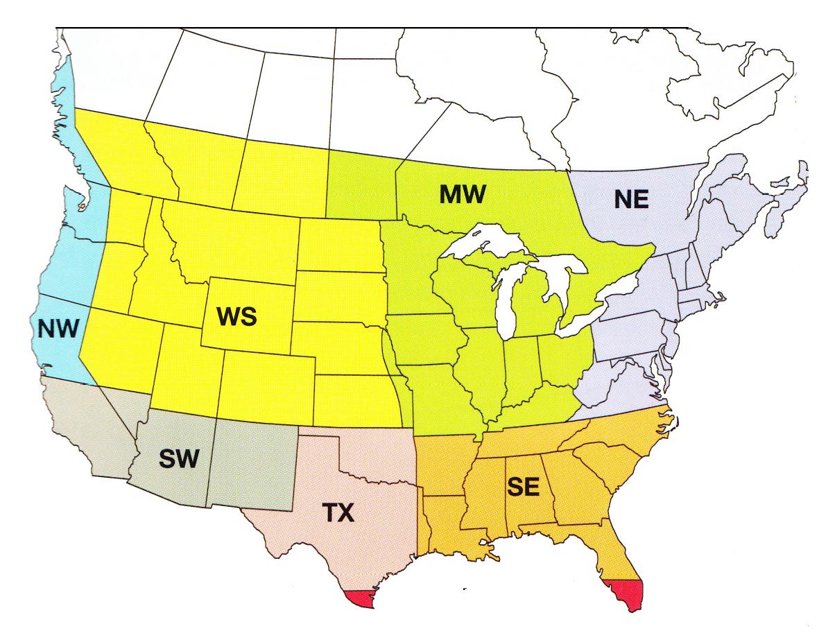 Regional WIldflower